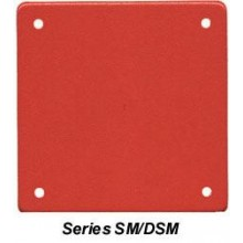 Wheelock DSM Sync Modules | DSM-12/24-R