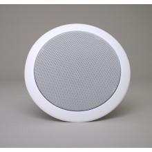 Premium Penton Audio RCS8XT Ceiling Speaker